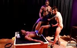 Orgia gay con ebony violentato da due cazzuti